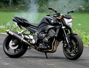 Thumbnail 2006 Yamaha FZ1-N, FZ1-NV, FZ1-S, FZ1-SV Service Repair Workshop Manual DOWNLOAD